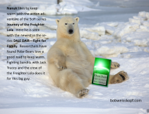 daledair-polar-bear-1
