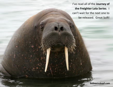 walrus-quote-journey